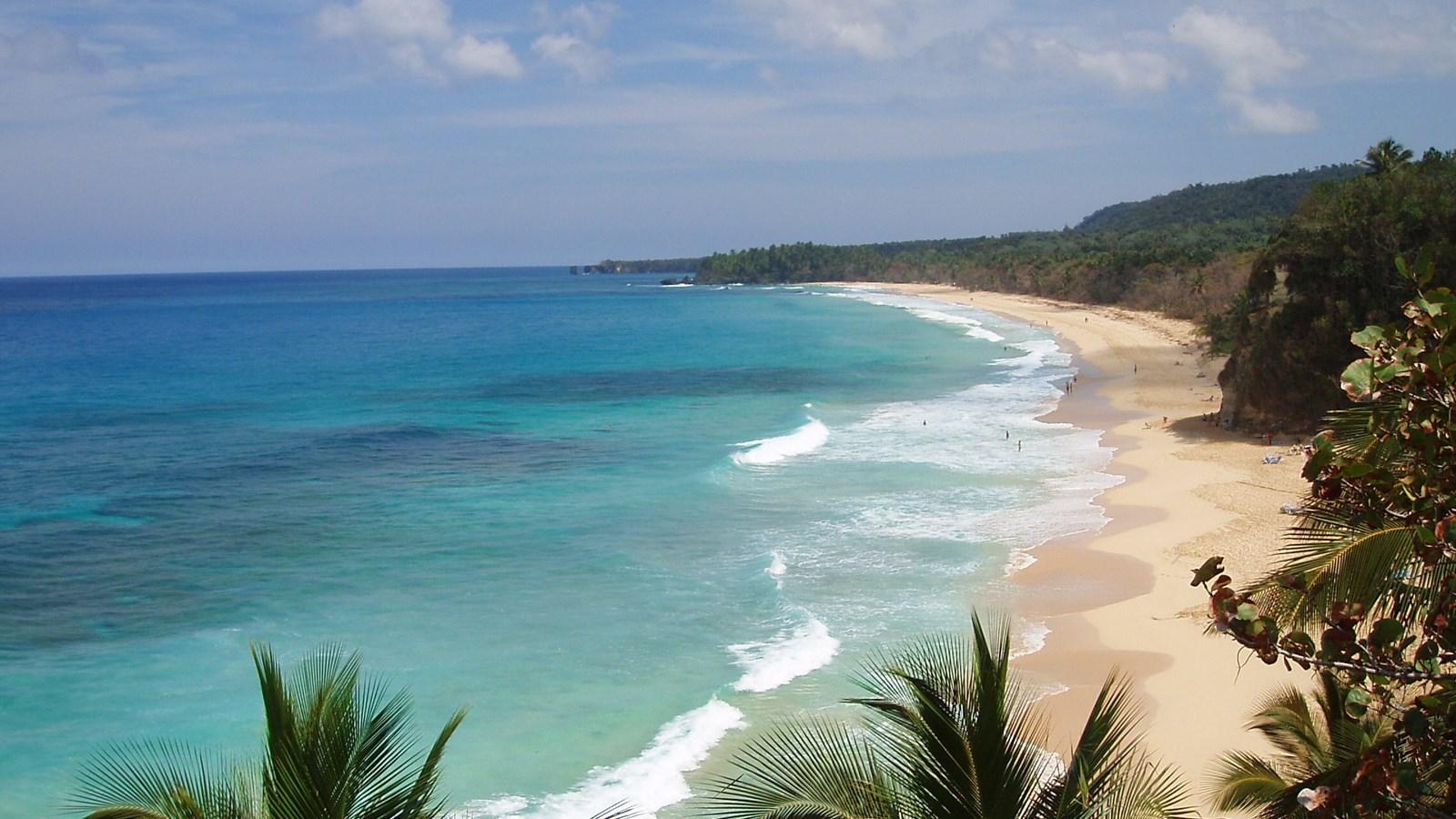 Cofresi Beach Resort Shuttle Service At The Cofresi Palm