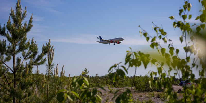 An airplane against the sky and green plants in the foreground